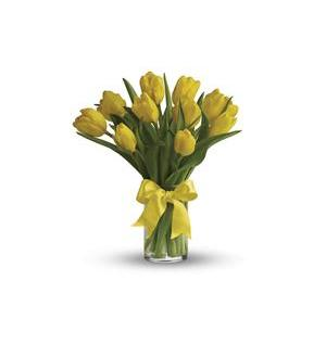Sunny Yellow Tulips (T140-1A)