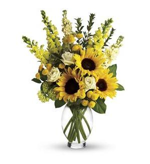 Here Comes The Sun by Teleflora (T152-1A)