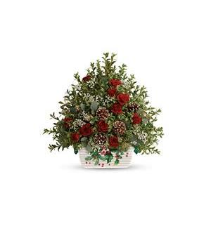 Teleflora's Warmest Winter Tree (T18X110A)