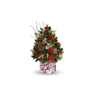 Teleflora's Festive Berries And Holly Tree (T18X610A)