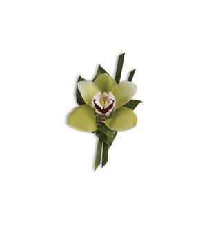 Green Orchid Boutonniere (T202-3A)