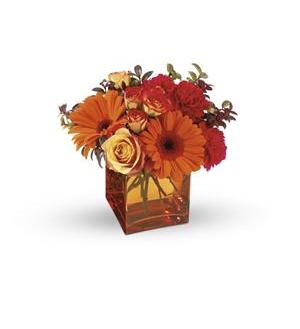 Teleflora's Sunrise Sunset (T47-1A)