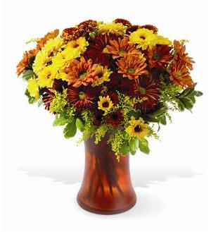 Country Chrysanthemums (TF-WEB46)