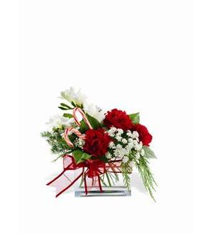 Teleflora's Peppermint Twist