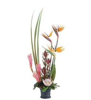 Tropical Paradise Arrangement  (TF213-2)