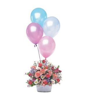 Birthday Balloon Basket (TF46-1)