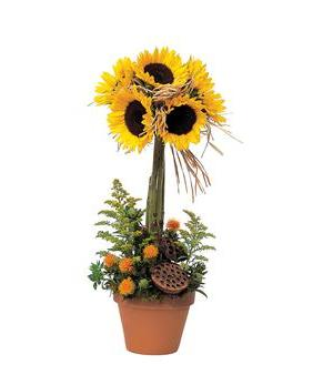 Sunflower Topiary (TF76-4)