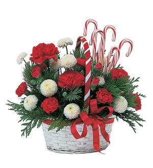 Candy Cane Basket (TF86-4)