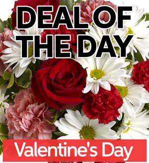 Fresh Valentine's Day Flowers - VDAY-DEAL1 (39.95)
