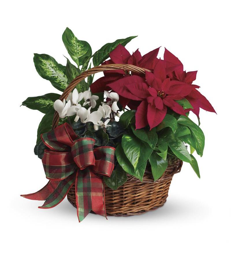 Holiday Homecoming Basket T123 2a