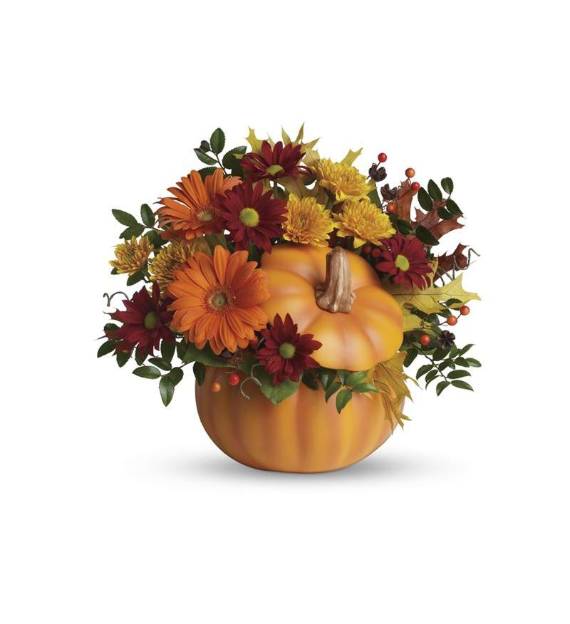 Teleflora S Country Pumpkin T175 1a 53 96