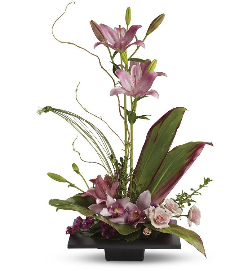 Imagination blooms t256 1a for Orquideas artificiales