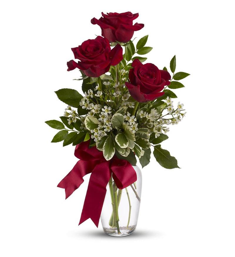 valentine's day ideas send flowers for valentine's day  flower, Beautiful flower