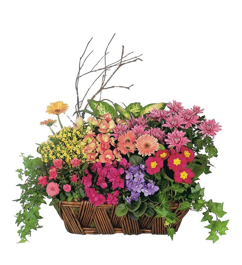 Deluxe European Garden Basket Tf125 1 150 26