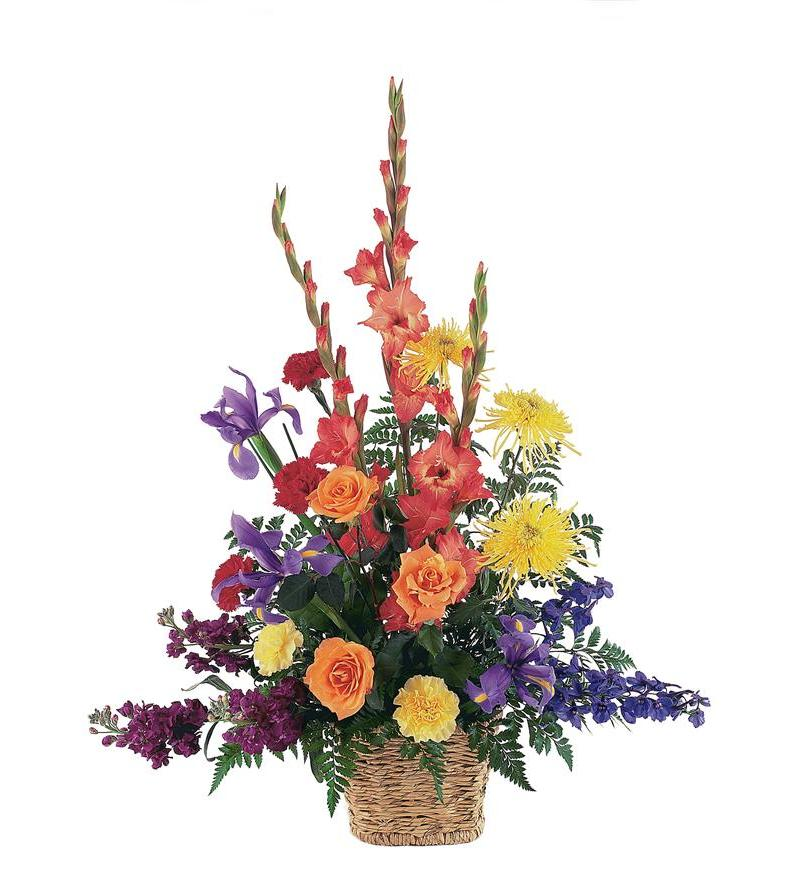 Rainbow Basket Tf187 6 80 06