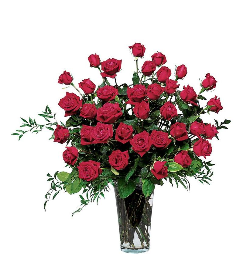 Three Dozen Red Roses Tf30 1 206 96