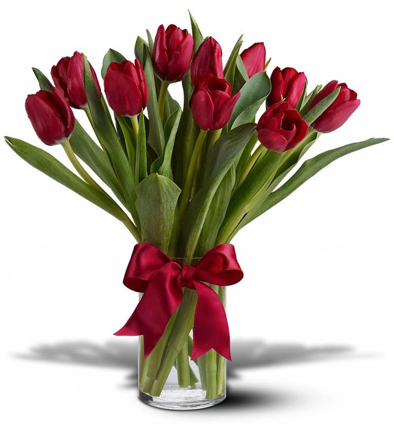 valentine's day tulips | flower shopping, Ideas